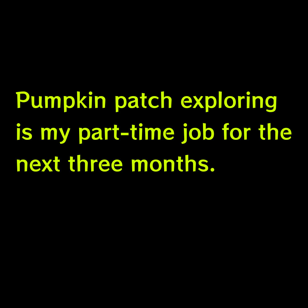 Pumpkin patch exploring is my part-time job for the next three months. - Pumpkin Patch Captions for Instagram