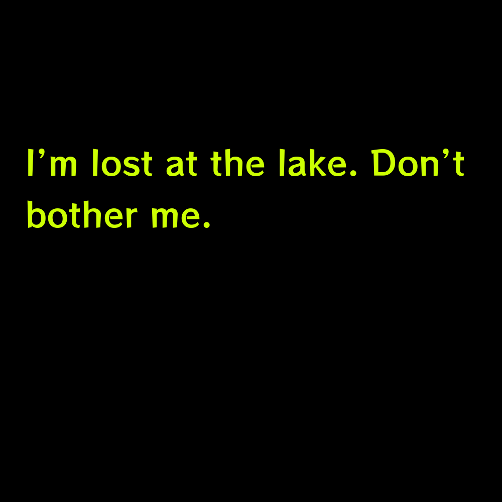 I'm lost at the lake. Don't bother me. - Funny Lake Captions for Instagram