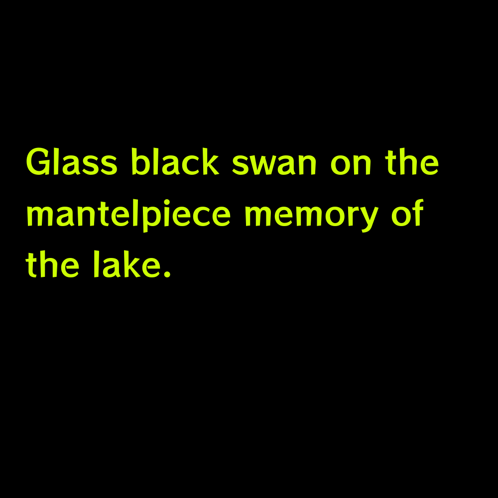 Glass black swan on the mantelpiece memory of the lake. - Good Lake Captions for Instagram