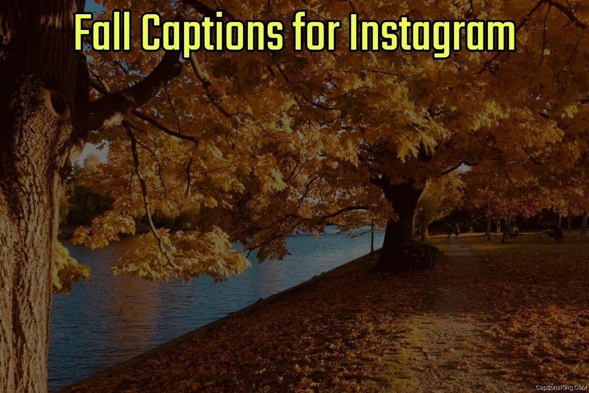 45+ Best Fall Captions for Instagram