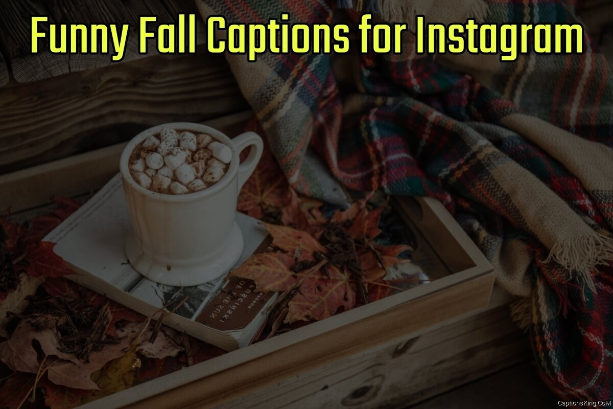 44+ Funny Fall Captions for Instagram